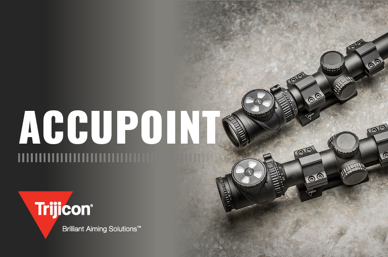 AccuPoint